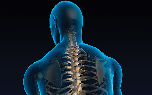 Expert Answers On Spine Rotation